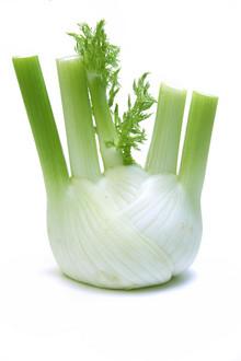 Meine Ernte: Fenchel Anbauen, Pflegen, Ernten Und Lagern Fenchel Pflanzen Tipps Pflege Gemuse