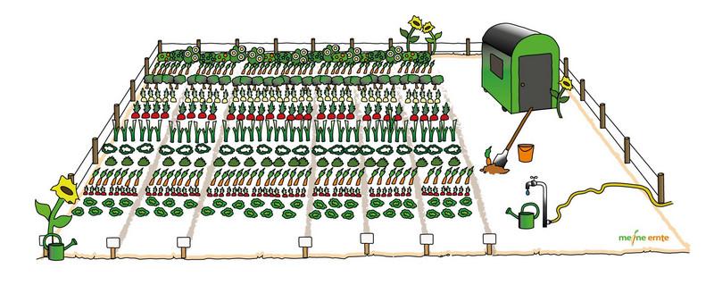 meine ernte: Der einfachste Weg zum Gemüsegarten - deutschlandweit