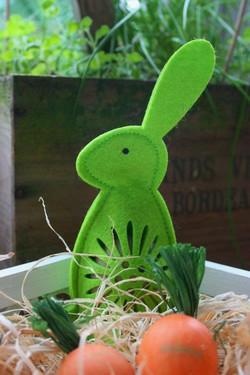Www meine  meine ernte: Neuigkeiten rund um meine ernte und die Gemüsegärten