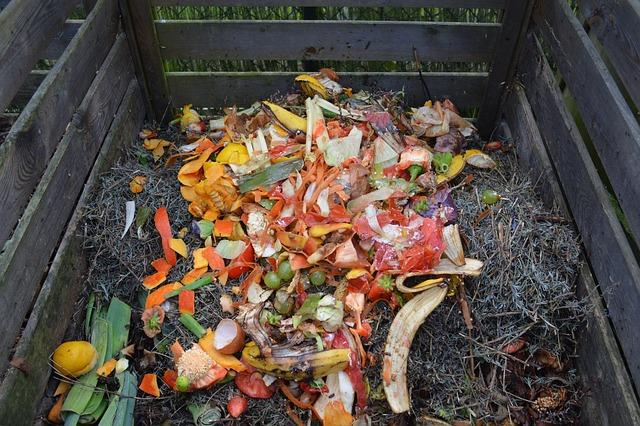 Meine Ernte Kompost Im Garten Oder Auf Dem Balkon Wir Zeigen Dir